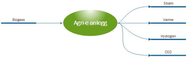 Agri-e%20system_norsk